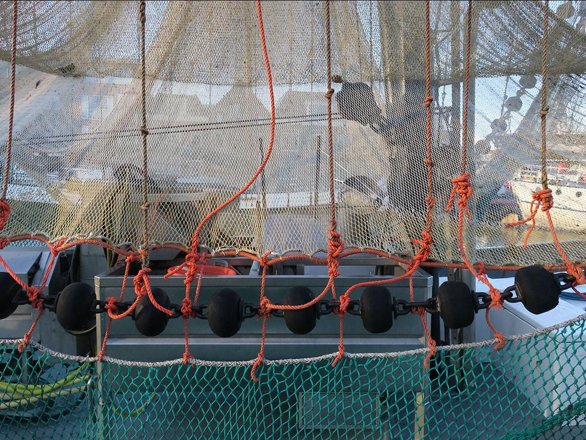 some fishing nets hanging out on a trawler in the harbor of Harlingen